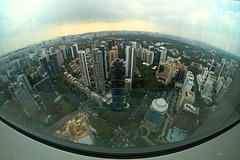 Eye View