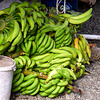 Bananas (Plantains?) in Market, St. Lucia
