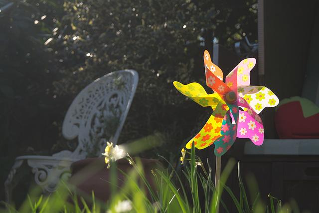Frühlingssonne DSC09172