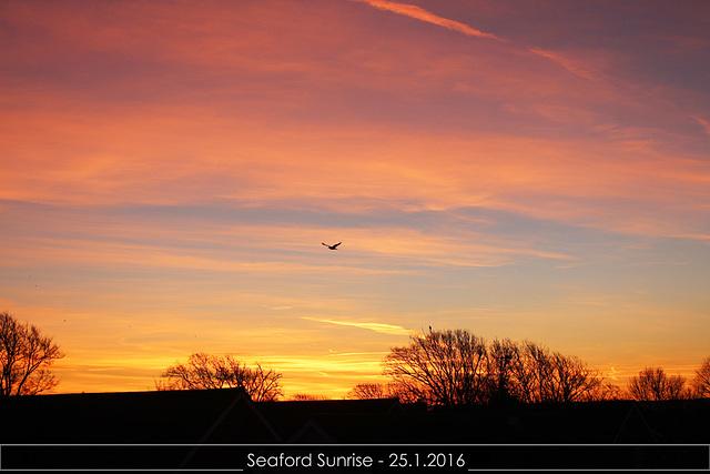 Sunrise Seaford - 25.01.2016