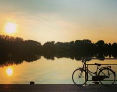 sunset bike fence