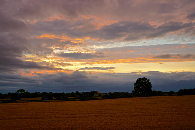 Evening skies over Gnosall