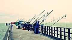 fishing (2 x PiP)
