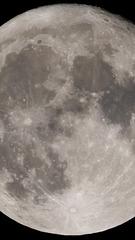 Maximalist Moon