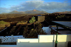 Lanzarote.Early morning