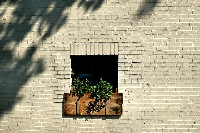 Deptford wall