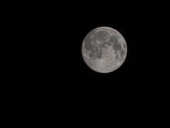 Lenzmond, Worm Moon (Wurmmond) oder Krähenmond
