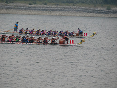 2018 Calgary Dragon Boat Races