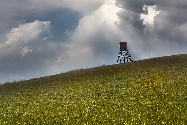 Ein Häuschen im Grünen - A cottage in the countryside