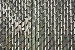 Happy Fence Friday (1)