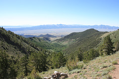 Stewart Creek and Reese River Valley