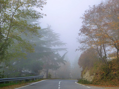 autunno in Langa