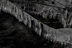 Zahnreihen