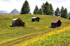 Rotwandwiesen (PIP)