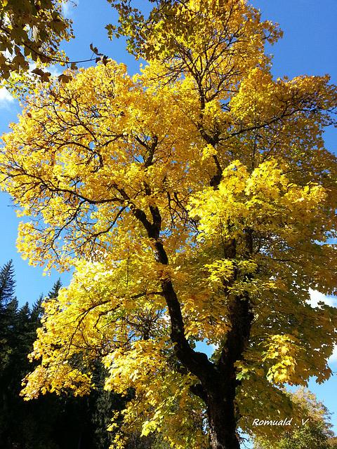 Le Locle en automne