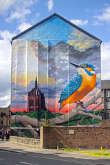 HFF from the Kingfisher Mural in Paisley