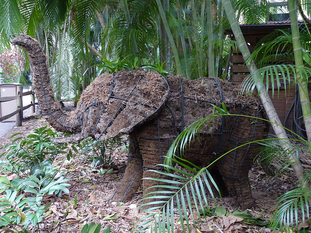 Palm Beach Zoo (7) - 26 January 2016