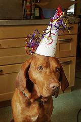 Happy birthday ;-)
