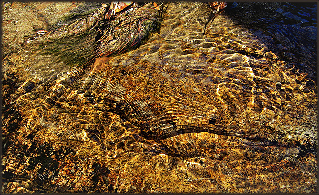 Mountain stream over granite (taken exactly 5 years ago).