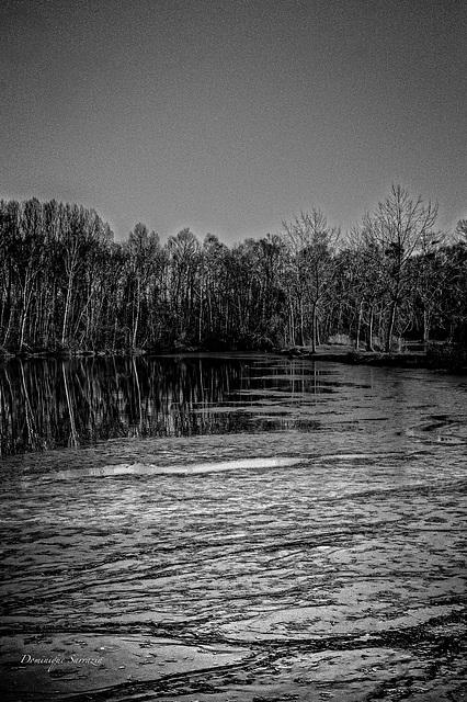 Episy-  l'étang gelé