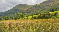 August in Cumbria