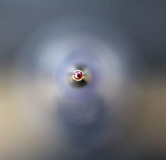 Makro - die Spitze einer Kugelschreibermine - Mein erster Versuch mit meinem neuen Objektiv