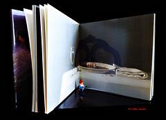 inside a book ...  (2 x PiP)