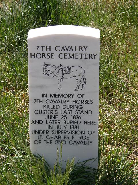 Horse Grave at Little Bighorn