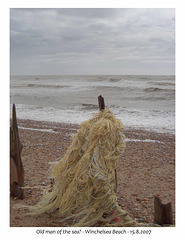 Old man of the sea? -  Winchelsea - 15 8 2007