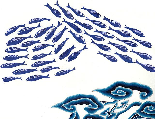 fish indigo