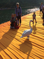 Live from the Floating Piers (2)