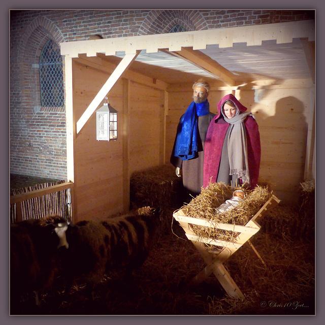 Nativity in Elburg, the Netherlands...