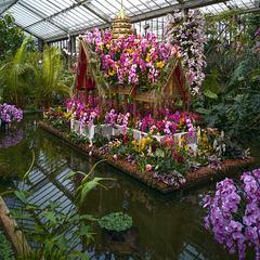 Kew Gardens, Orchid exhibition