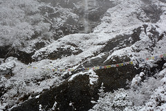 Khumbu, Snowfall in the Forest
