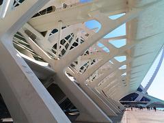Valencia: Museo de las Ciencias Príncipe Felipe, 14