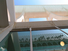 Valencia: Museo de las Ciencias Príncipe Felipe, 11