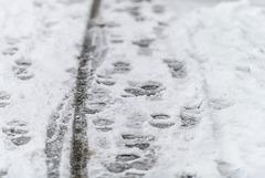 Snow (04.02.2018)