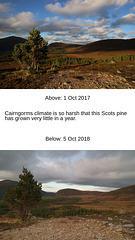 Time lapse, Coire na Ciste, Cairngorm