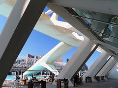 Valencia: Museo de las Ciencias Príncipe Felipe, 12