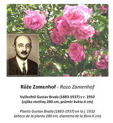 Rozo Zamenhof