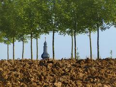 Behind Topsoil
