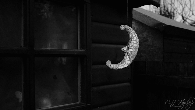 the shed~moon