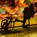 FoL 2016 - night. bike. kiss
