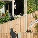 Glimpse in neighbours garden