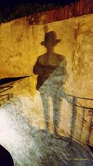 der Schatten ihrer selbst