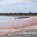 Pink lakeside