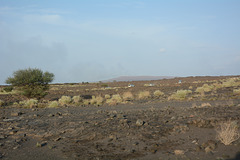 Ethiopia, On the Way to Erta Ale Base Camp