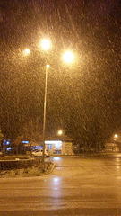 snow in the night