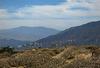 Coachella Valley Wind Turbines (0432)