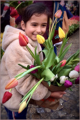 Tulips in Amsterdam... 1